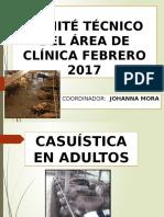 COMITE  febrero 2017.pptx