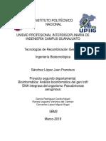 Proyecto Recombinación.pdf