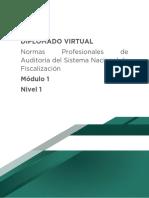 Normas profesionales de auditoría del sistema nacional de fiscalización