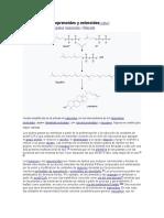 Ácidos grasos, isoprenoides y esteroides.docx