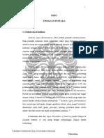 digital_125167-R19-OM-180 Profil status-Literatur-converted
