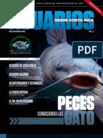 Boletín #5, Julio 2010