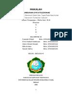 Kel VI. Tumbuhan Dycotiledonae.docx