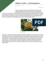 rosengallen-schlafc3a4pfel-im-volks-und-aberglauben.pdf