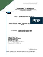 Reporte empresa perville[1].docx