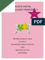 REVISTA DIGITAL CONTABILIDAD FINANCIERA V