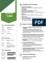 CURRICULUM VITAE - LESLIE IVETT TUME ANCAJIMA - NO DOCUMENTADO.pdf