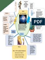 infografía paradigmas