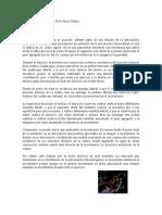 Debirson Arias Analisis De Ejercicios