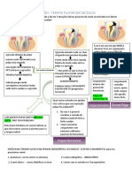Terapia endodôntica em dentes decíduos