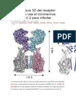 La estructura 3D del receptor ACE2 que usa el coronavirus SARS