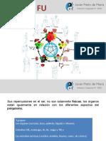 Zang Fu 68.pdf