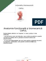 Biomecanica si anatomie functionala - Stagiu Practic - Capul