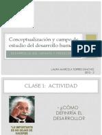 Conceptualizacion y campo estudio P1 2015 2.pdf