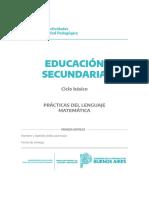 Cuadernillo Nivel Secundario - Ciclo básico