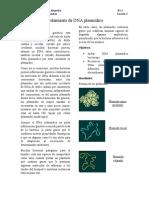Aislamiento de DNA plasmídico.docx