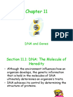 Chapter_11 (1).ppt