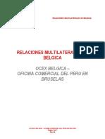 relaciones-multilaterales-de-belgica
