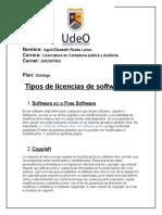 licencias de software.docx