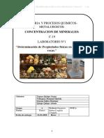 INFORME N1 FLOTACION.pdf