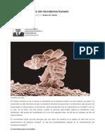 2017 Más allá del proyecto del microbioma humano Dpto de Genética y Biología Molecular.pdf