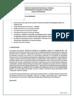 guia1_sg-sst.pdf
