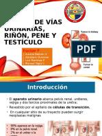 cancer de vias urinarias, pene y testiculo.pptx