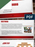 presentacion Sector Primario