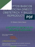 CONCEPTOS BASICOS EN MEDICINA PERINATAL Y SALUD REPRODUCTIVA_196968ead73ff6b02024bf8a84e92b00