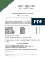 100527_delibera_giunta_n_029