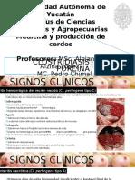 Clostridiasis-dx-tx-y-prevención. signos y dx dif.pptx