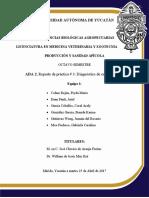 Informe-de-práctica-3-ABEJAS.docx