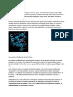 proteinas.rtf
