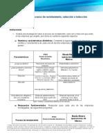 procesos de reclutamiento.docx