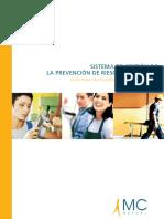 sistema_gestion_es.pdf