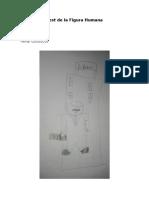 Test Figura humana 2