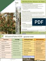 Flyer November 2019.pdf
