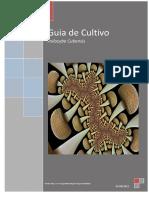 Guia de Cultivo Psilocybe Cubensis.pdf
