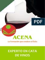 Experto_cata_vinos