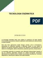 228145910-Tecnologia-de-Las-Enzimas.ppt