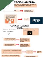 Codificación Abierta Investigación  Cualitativa