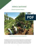 abundancia_agroforestal_espanhola(1).pdf