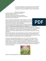 Resumen AS y GNA para cartillas