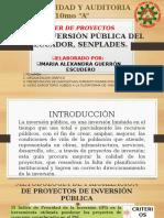 GUIA PARA ELABORACION DE PROYECTOS DE INVERSIÓN PUBLICA AREA 1. ALEXANDRA GUERRON