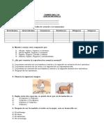 EXAMEN_C_NATURALES_CS2_PRIMER PERIODO..docx