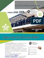 2019 APApresentacion APA