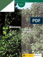Biomasa Cultivos energéticos