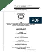 PROPUESTA DE UN PROGRAMA FISIOTERAPÉUTICO PARA AUMENTAR LA FUERZA MUSCULAR EN PACIENTES CON AMPUTACIÓN TRANSFEMORAL, EN FASE PRE PROTÉSICA, SECUNDARIO A DIABETES MELLITUS