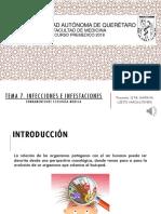 TEMA 7. INFECCIONES E INFESTACIONES
