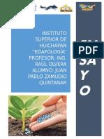 JUAN PABLO ZAMUDIO QUINTANAR. ENSAYO.docx